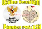 Naik pangkat PNS reguler