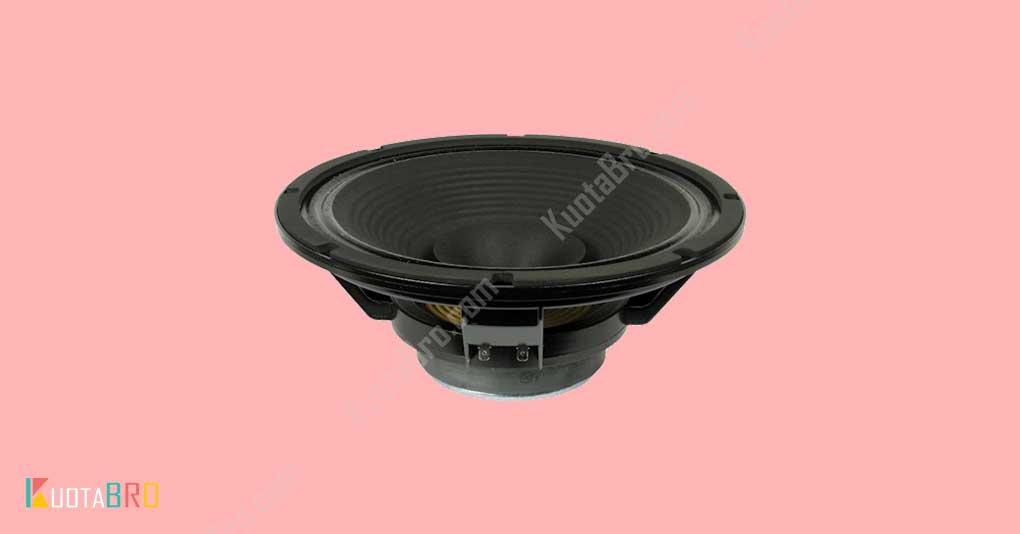 Speaker Full Range