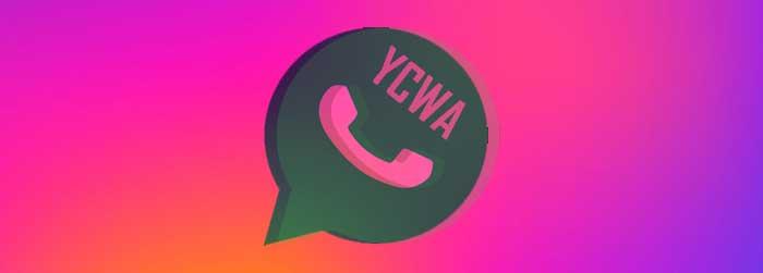 YCWhatsApp