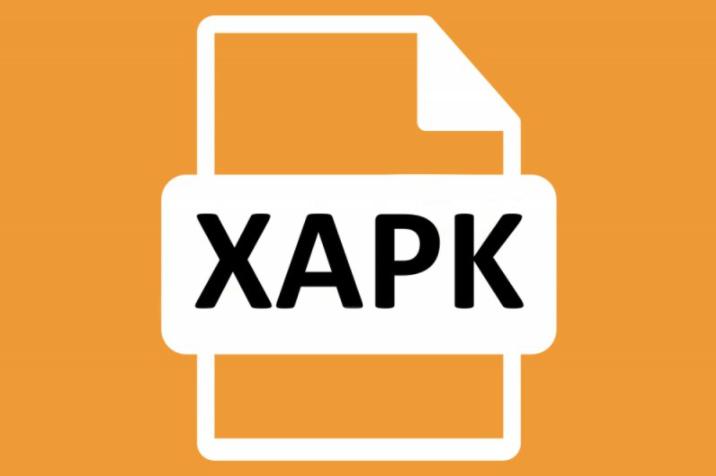 Cara Instal XAPK Dengan Mudah - xapk image
